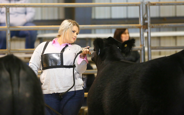 Tennessee Beef Agribition
