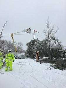 Snow in Springfield January 2016