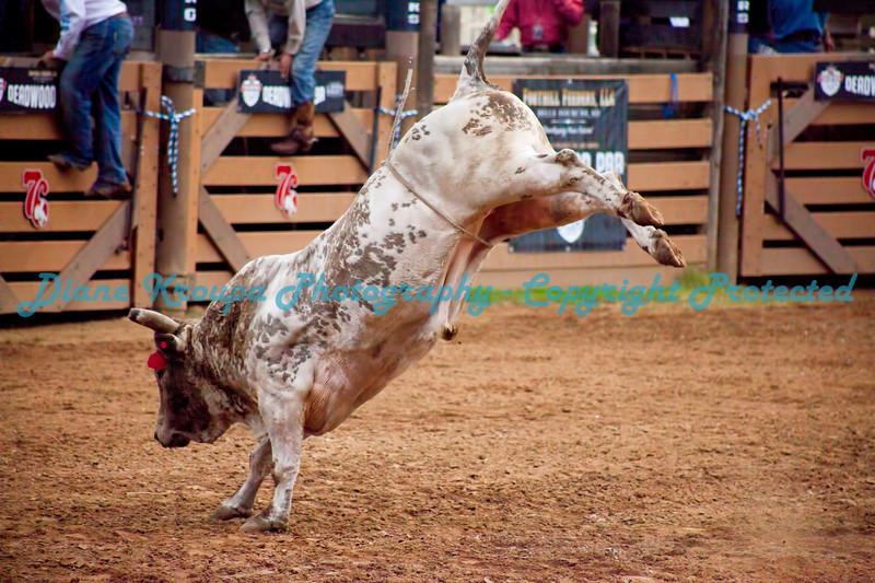 312 -  Professional Bull Riders Rodeo - Deadwood, SD
