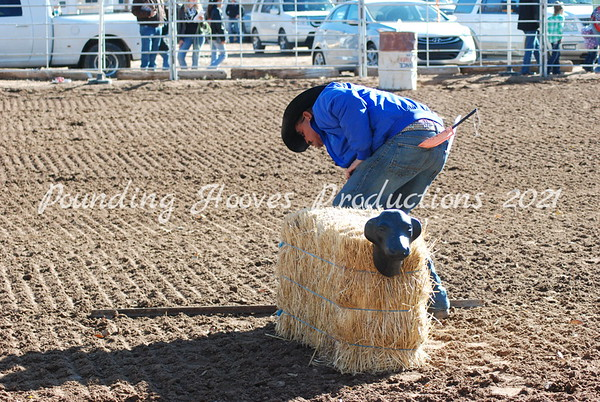 11-17-13 Dummy Roping