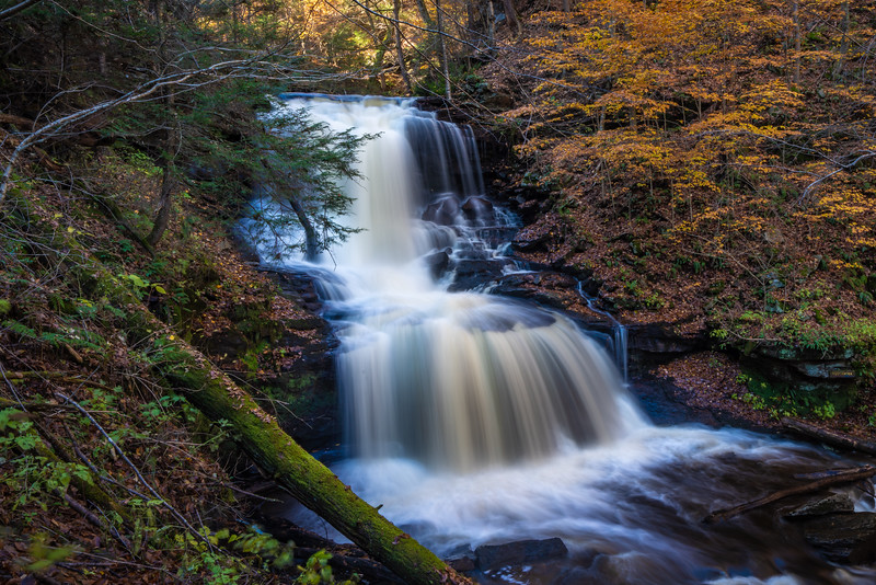 Ricketts Glen-5227.jpg