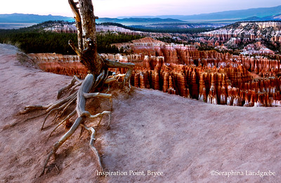 Bryce, Zion & Grand Canyon