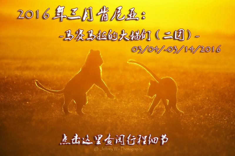 _PC_1741三月猫.jpg