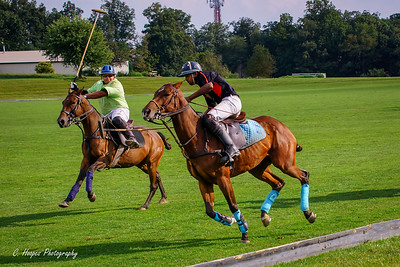 Brandywine Polo Club