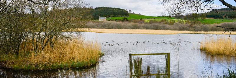 2013 - May 9 - Braeroddach Loch