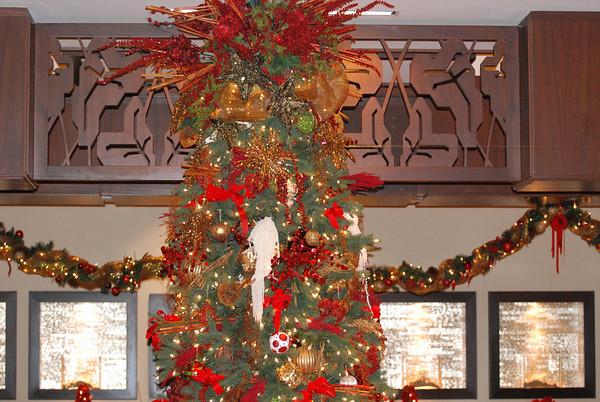 Hawaii Christmas 2009