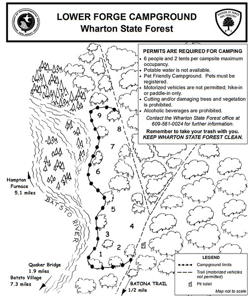 Wharton State Forest (Lower Forge Campground)