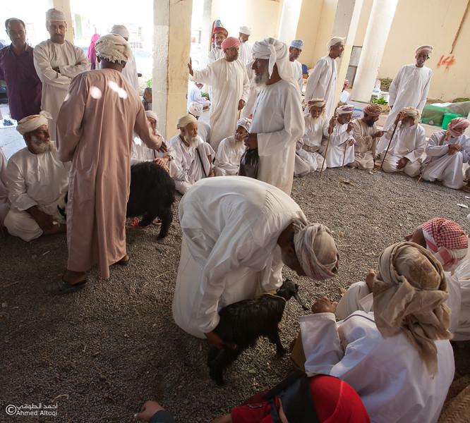 Traditional market (93)- Oman.jpg