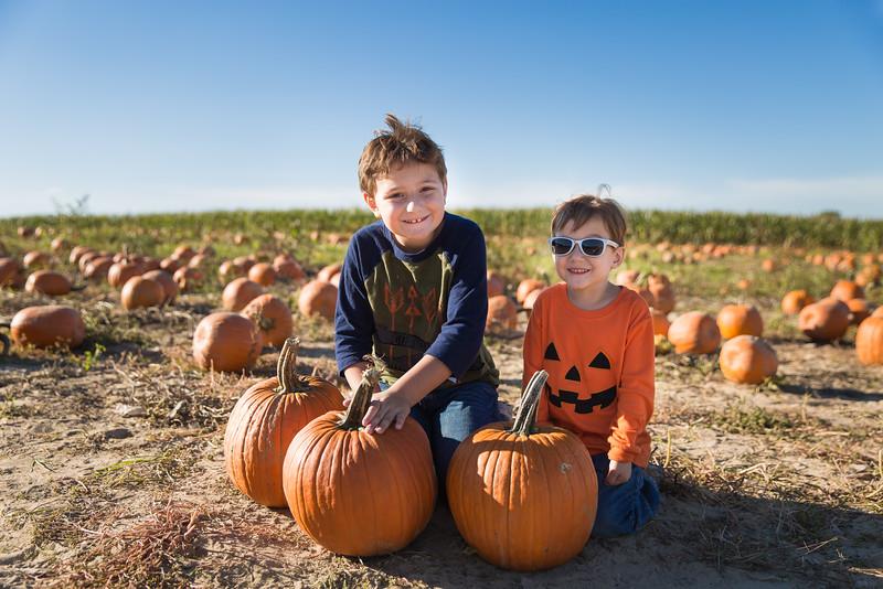 pumpkin patch oct 15 2016-7.JPG