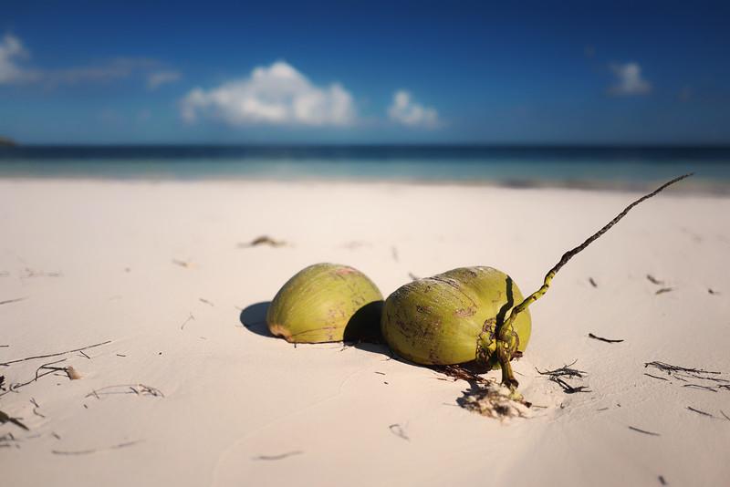 Bahamas-10.jpg
