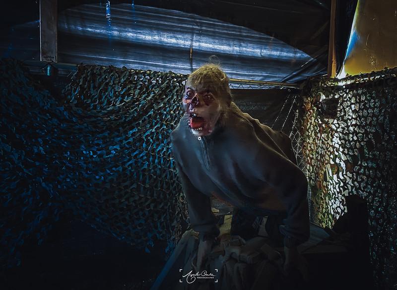 10_30_2019_Halloween_030.jpg