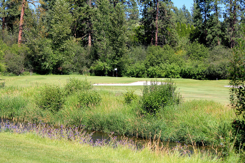 #17 Green, Wandermere GC,  Spokane, Wa