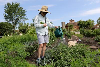 072920 Community Gardens (MA)