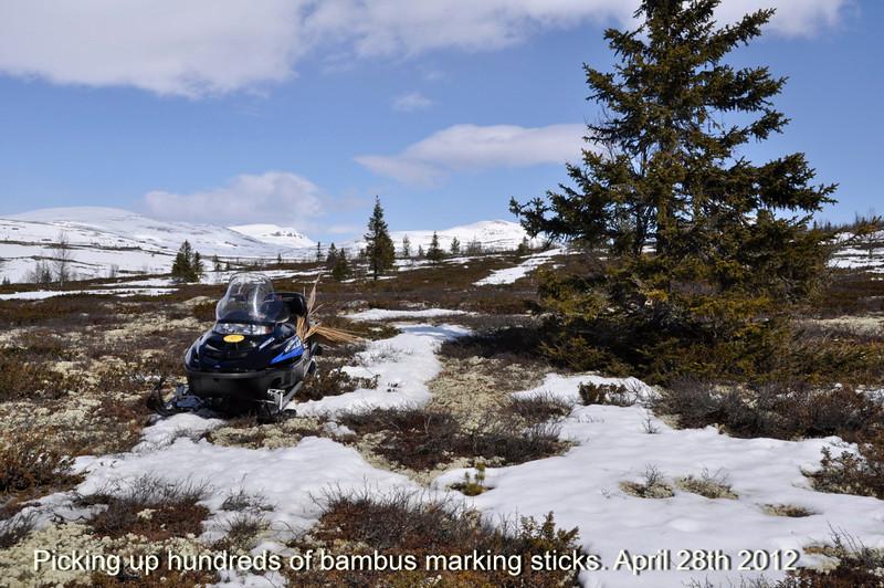 snoe scooter in April at Venabygdsfjellet.jpg