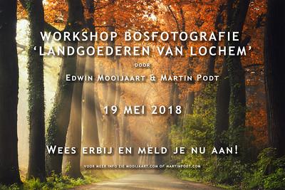 2018-05-19 Workshop bosfotografie (Dutch)