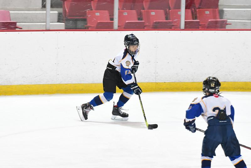 Orda-CANAM-CANAM Hockey 1980 Rink-id224952094.jpg