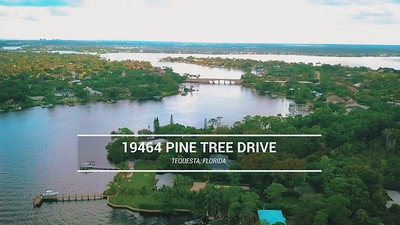 19464 Pine Tree  Drive