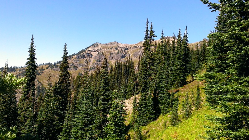 We are starting to see the rocky landscape as we approach treeline - still on the Goat Ridge Trail