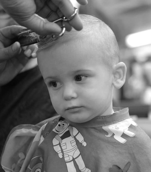 Max's Haircut 6-23-19