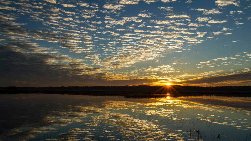 Meadows Sunrise