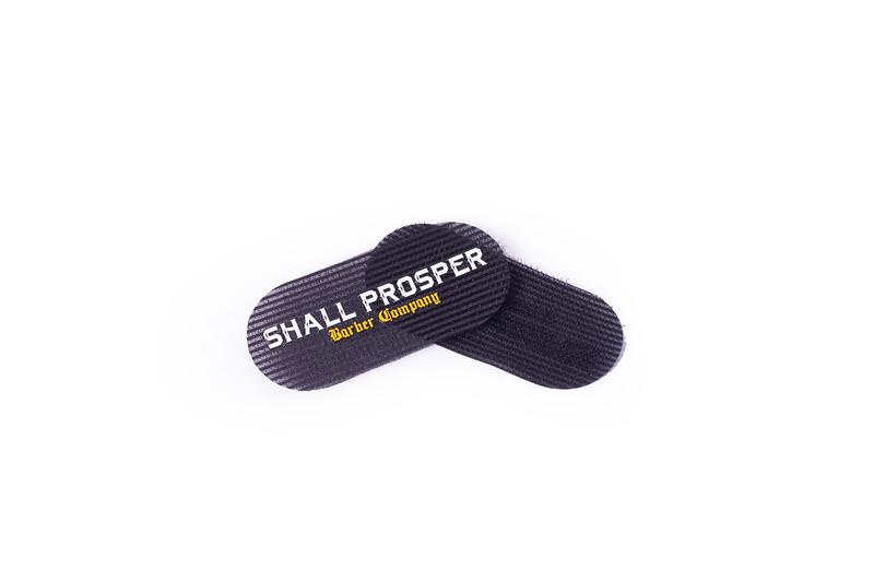 Shall Prosper-11.1.jpg