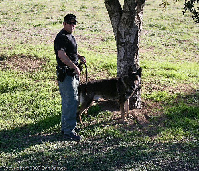 K9 tracking training Ramona