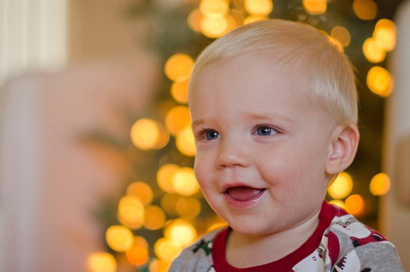Albers Christmas Tree 2011