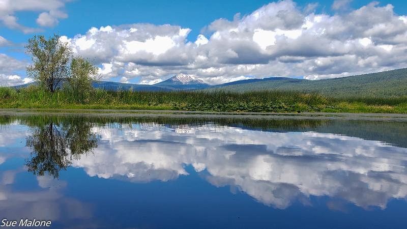 07-16-2019 Crystal Creek Kayak-18.jpg
