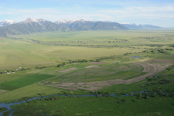 Madison River / Channels Ranch