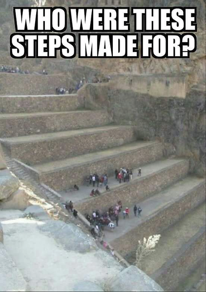 Who were these steps made for.png