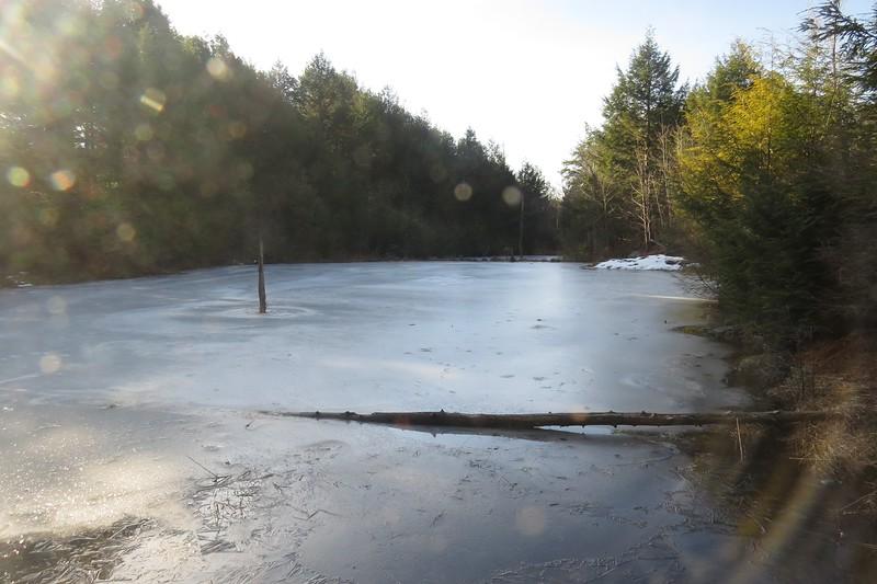 Series of beaver ponds.JPG