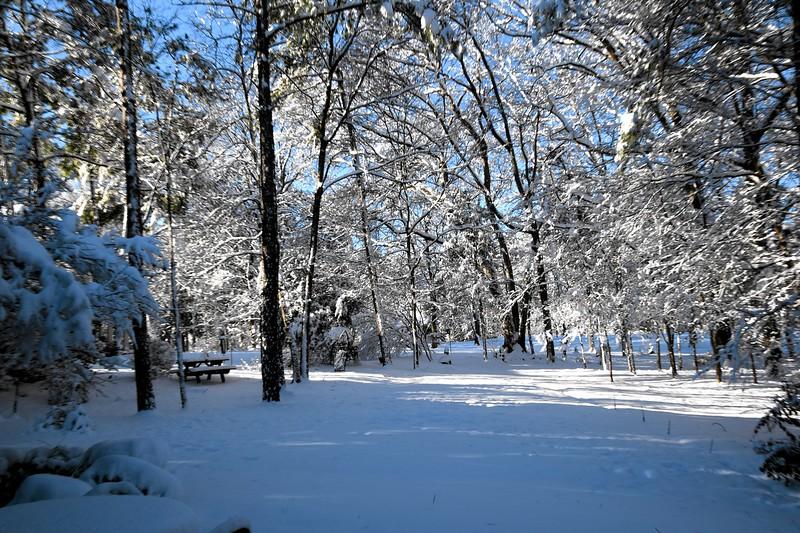 snow_o1_2018_207.jpg
