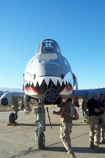 A-10 gun.jpg