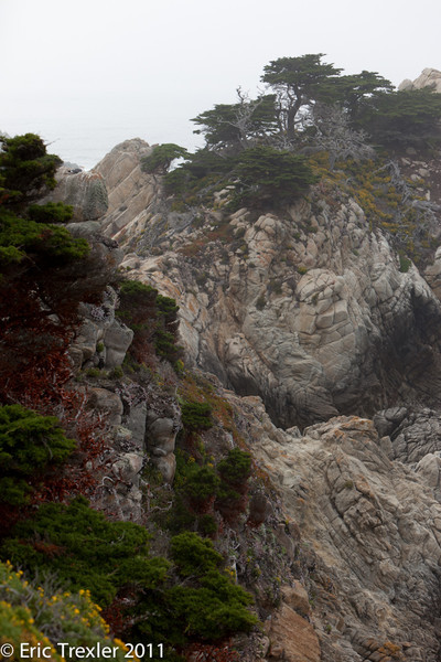 Big_Sur_Day2_6_20110705-19.jpg