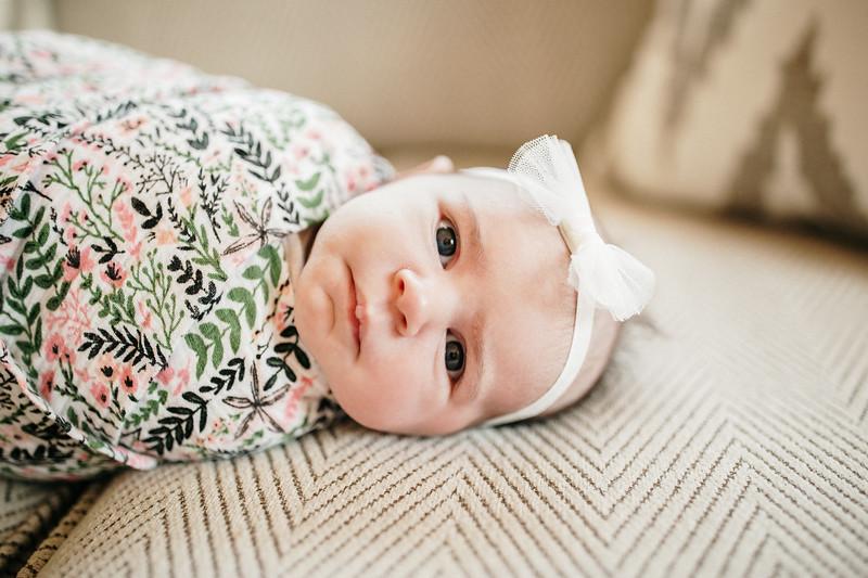 BabyMorrill-5.jpg