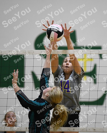2019 St. Edmond Volleyball