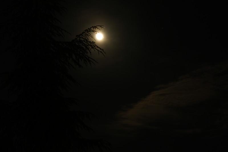 Full Moon at Villa Rosa.JPG