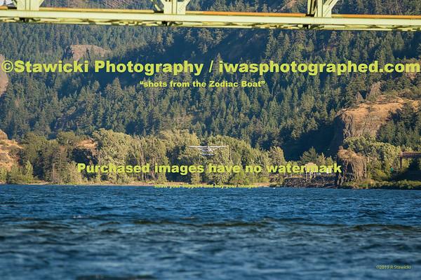 WSB - Event Site. Thursday 8.1.19 503 images