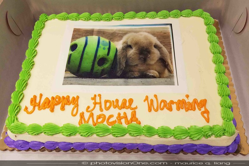 Mocha's Cake
