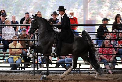 4/30/2011 National Racking Horse Association