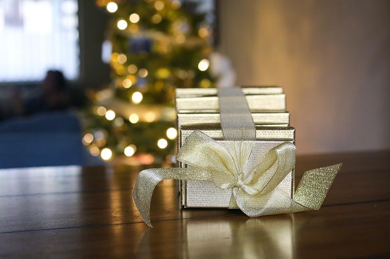 2019-12-22_ChristmasDecor-4417.jpg
