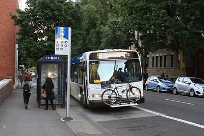 Evening Transit