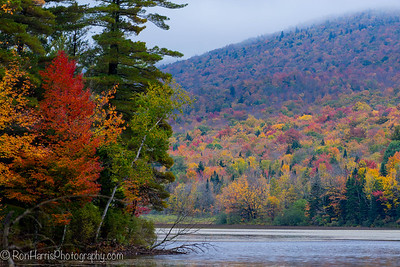 Fall Colors, Vermont 2014