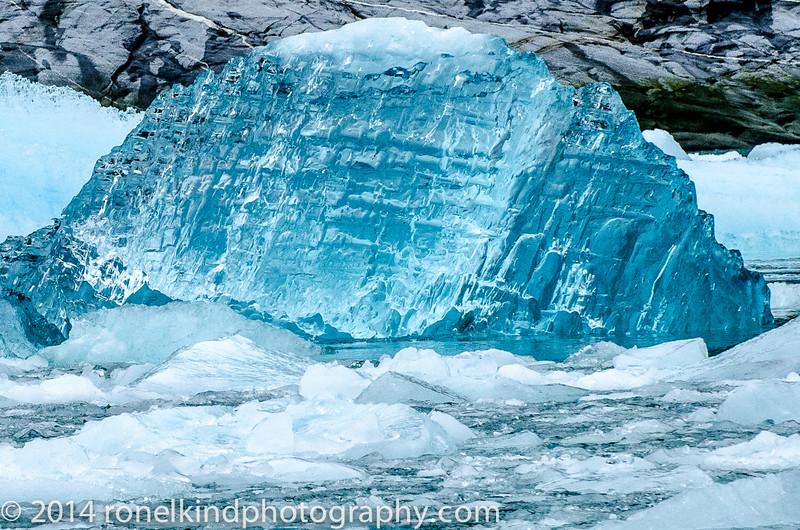 Glaciers-0169.jpg