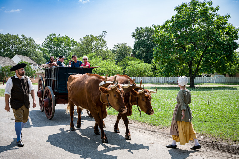 ©2011-2019 Dennis A. Mook; All Rights Reserved; Colonial Williamsburg-700707.jpg