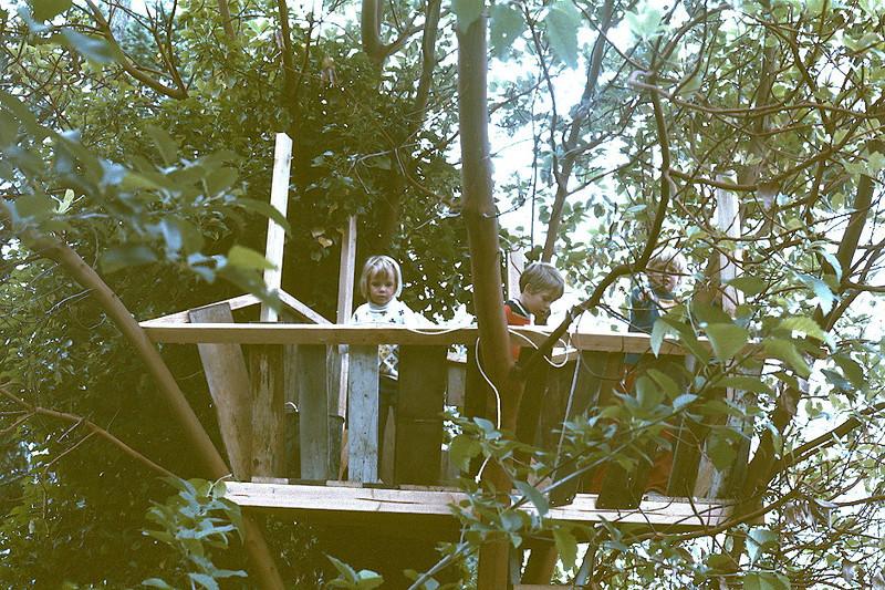 sch-treehouse.jpg