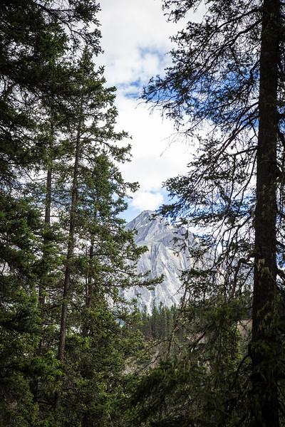 Banff, Alberta Canada 2019-2316.jpg