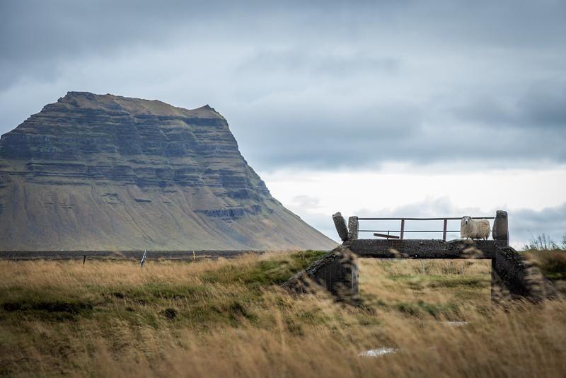 9695-Iceland-Paul-Hamill.jpg