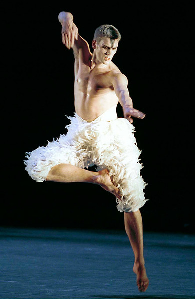 Swan Lake/Adventures in Motion Pictures