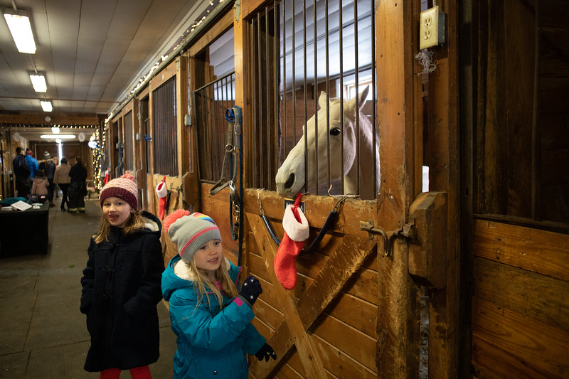 FPC_Horses and Holidays_2019_ ATC99467.jpg
